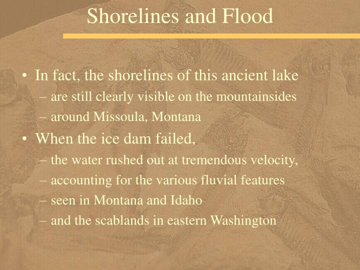 Shorelines and Flood
