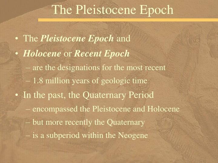 The Pleistocene Epoch