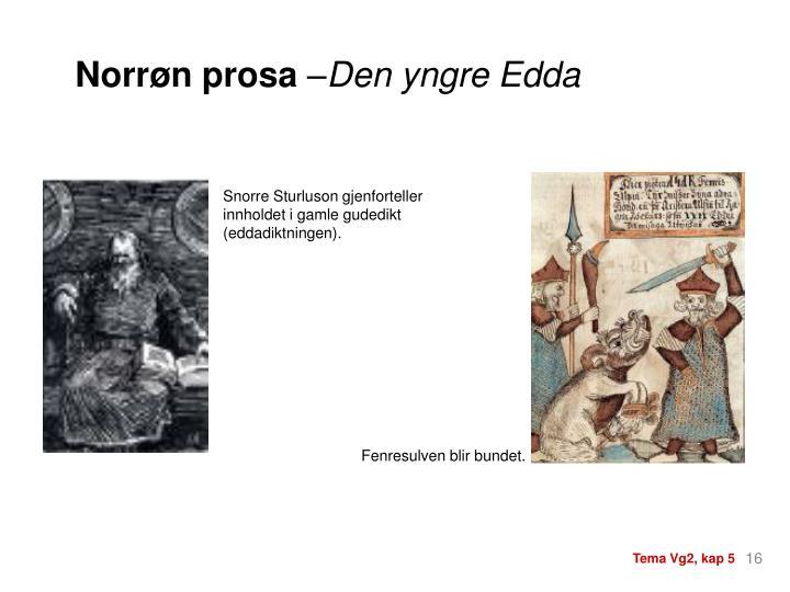 Norrøn prosa