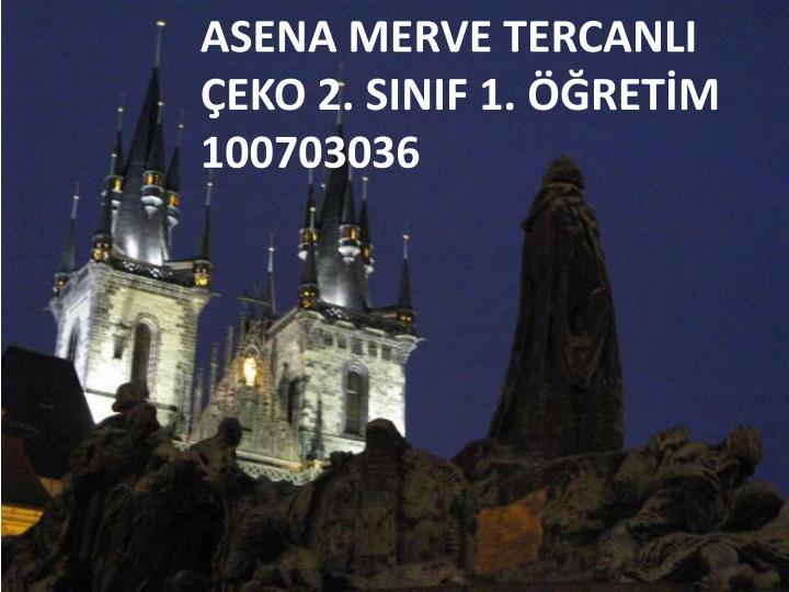 ASENA MERVE TERCANLI