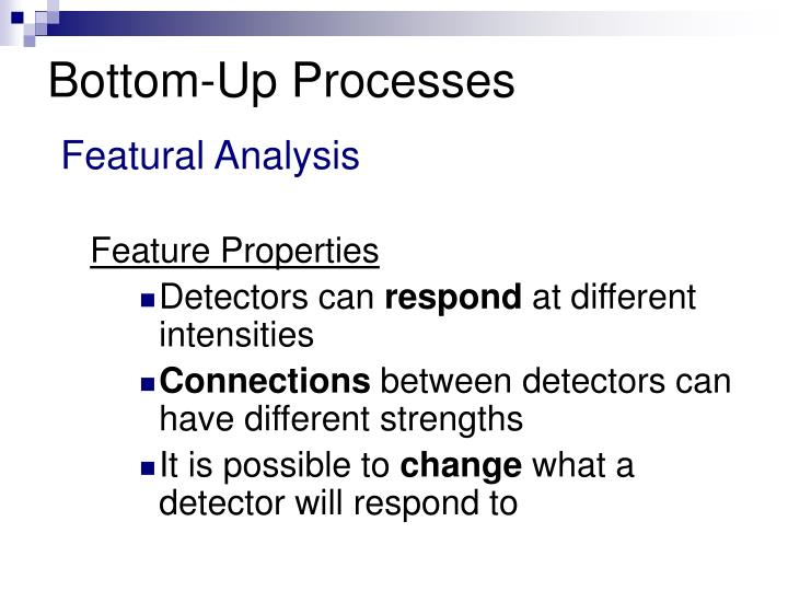 Bottom-Up Processes