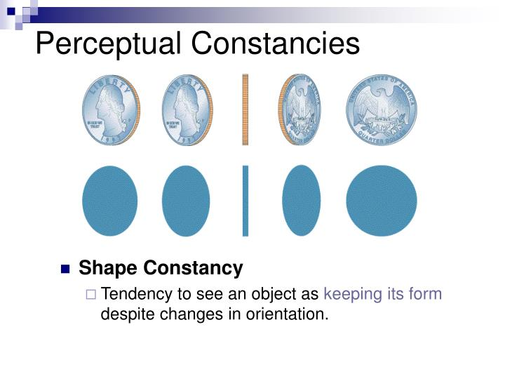 Perceptual Constancies