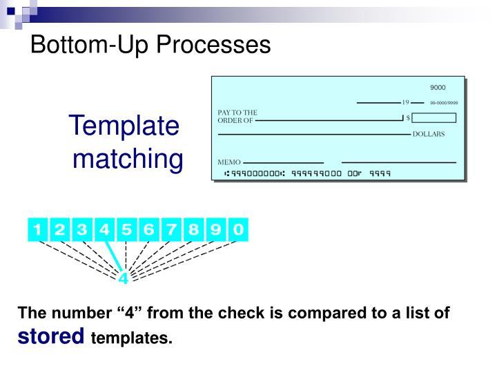 Bottom-Up Processes