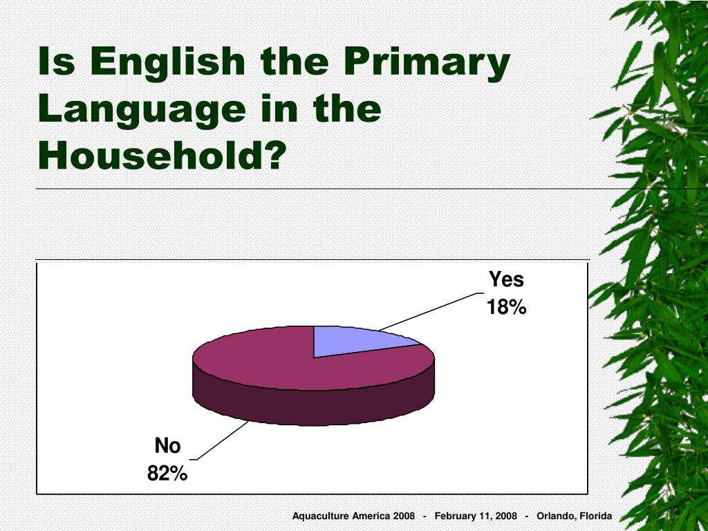 Is English the Primary Language in the Household?