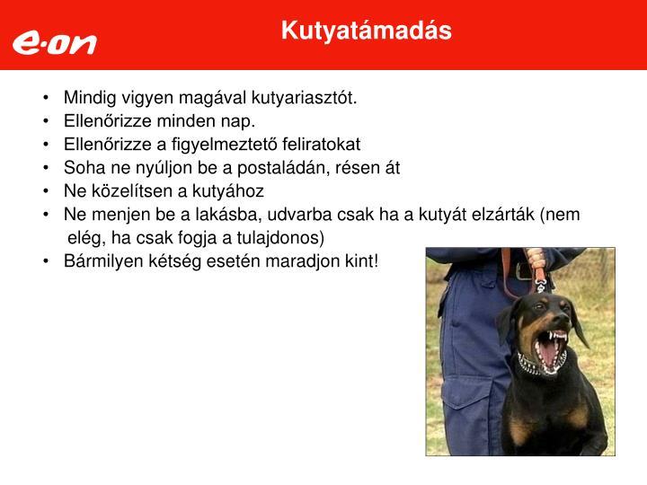 Kutyatámadás
