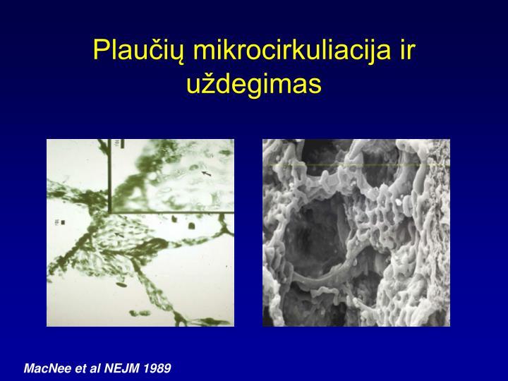 Plaučių mikrocirkuliacija ir uždegimas