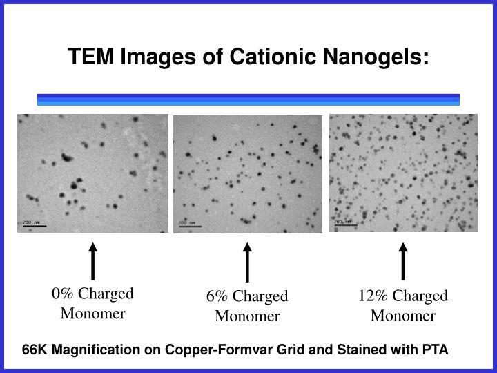 TEM Images of Cationic Nanogels: