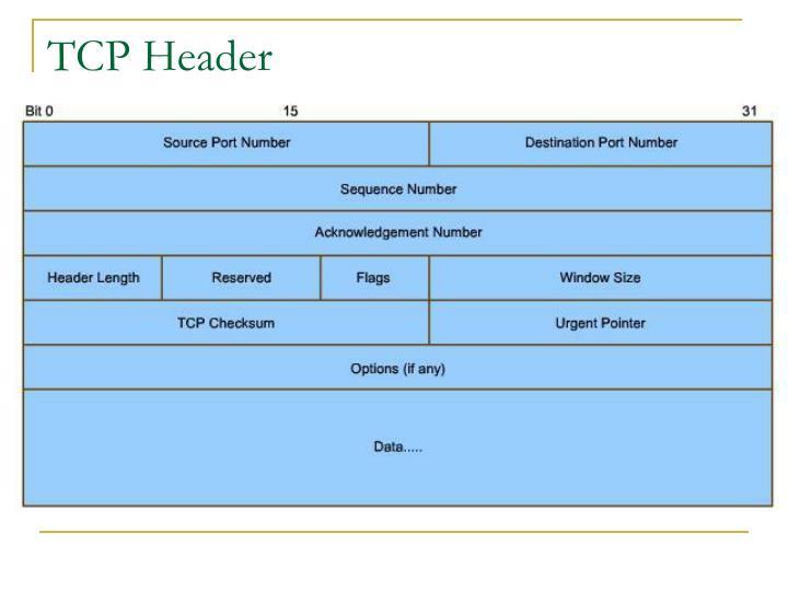 TCP Header