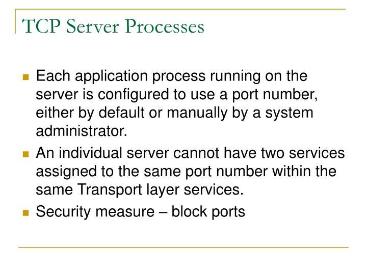TCP Server Processes