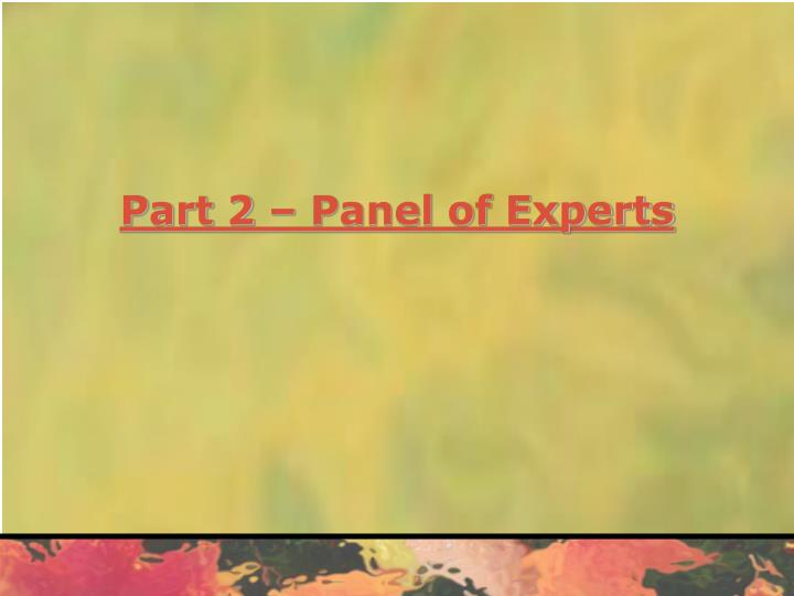 Part 2 – Panel of Experts