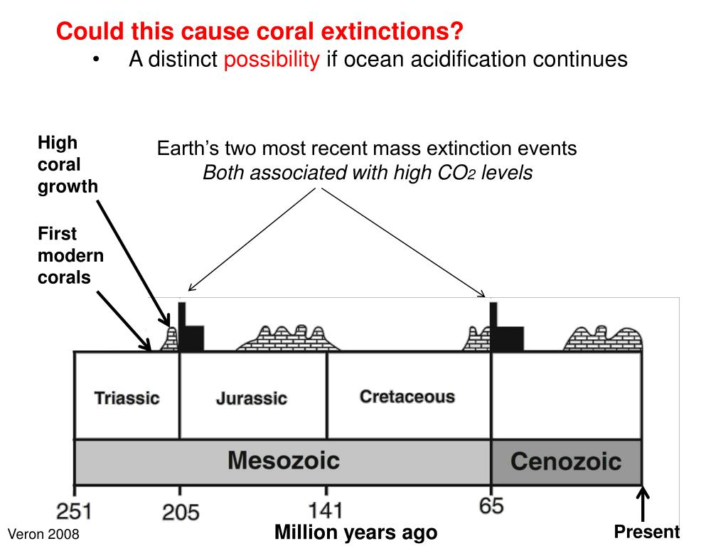 Could this cause coral extinctions?