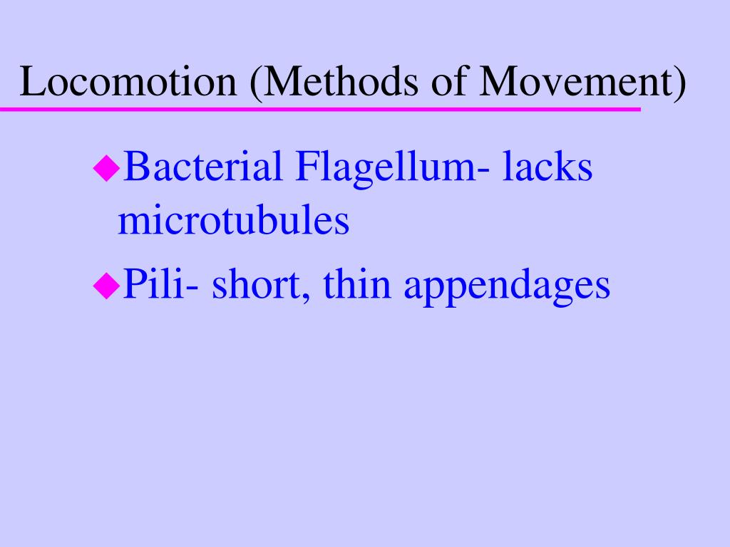 Locomotion (Methods of Movement)