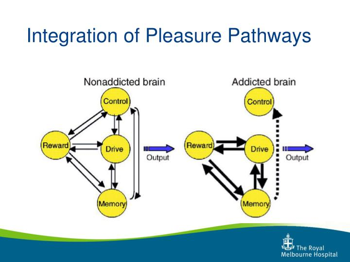 Integration of Pleasure Pathways