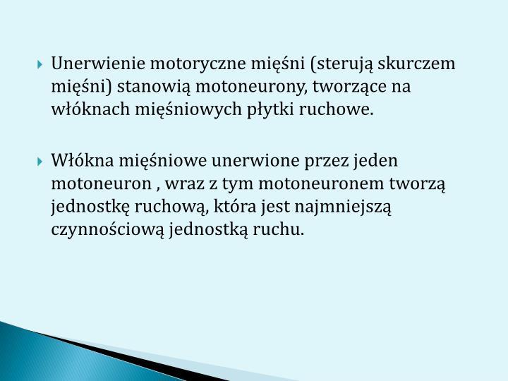 Unerwienie motoryczne mini (steruj skurczem mini) stanowi motoneurony, tworzce na wknach miniowych pytki ruchowe.