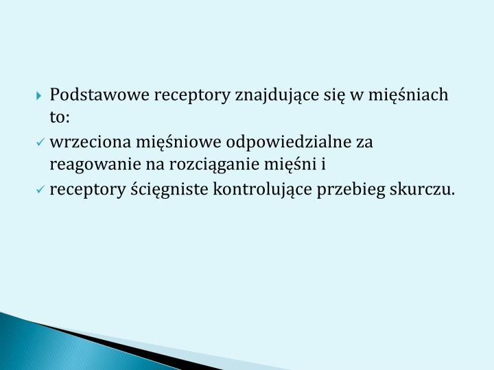 Podstawowe receptory znajdujące się w mięśniach to: