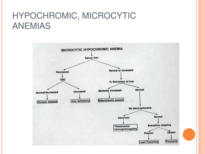 HYPOCHROMIC, MICROCYTIC ANEMIAS
