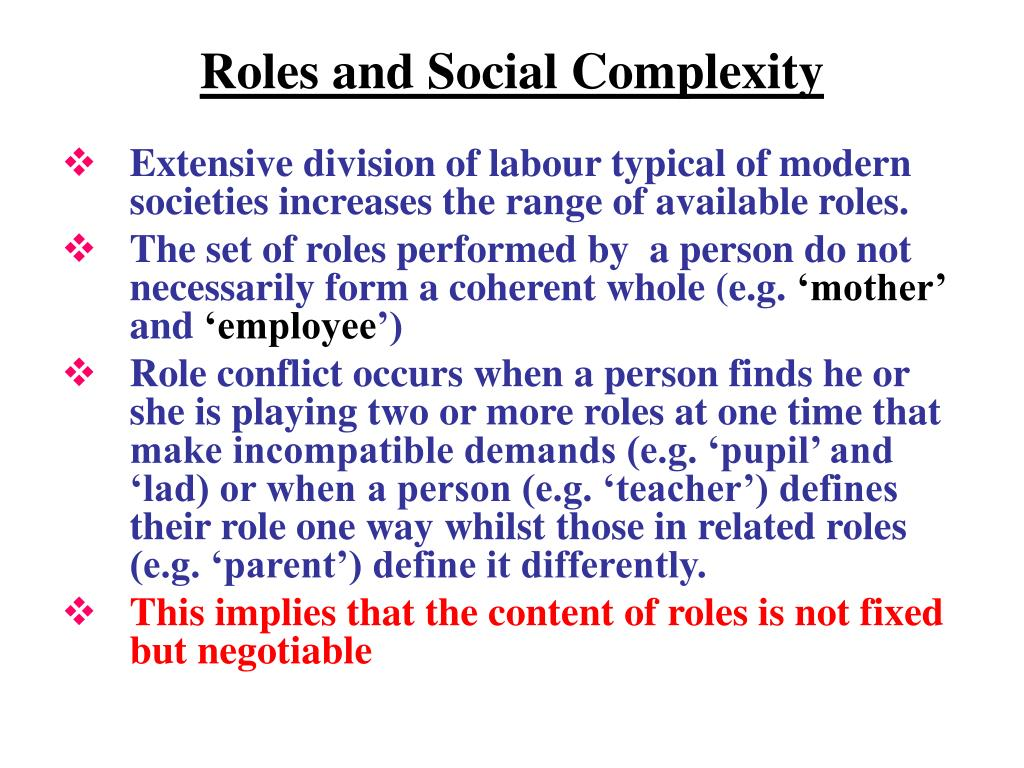 Roles and Social Complexity