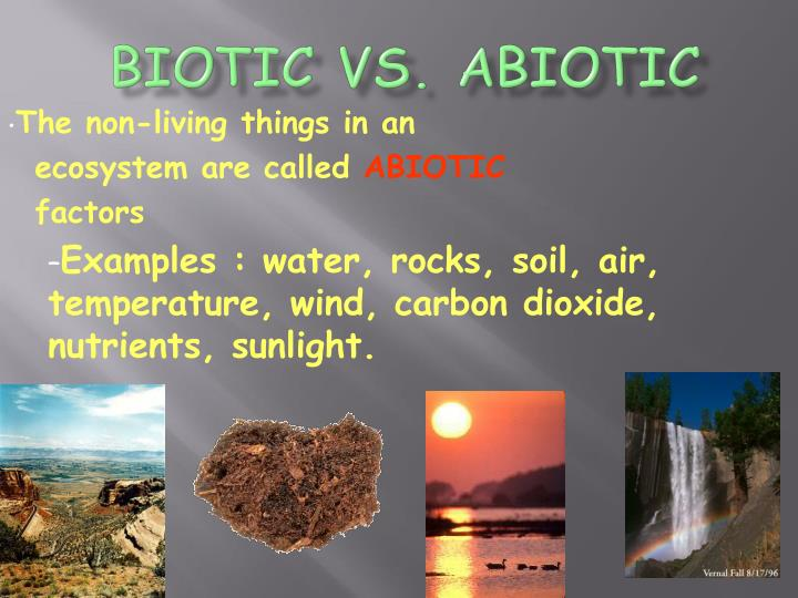 Biotic VS. Abiotic
