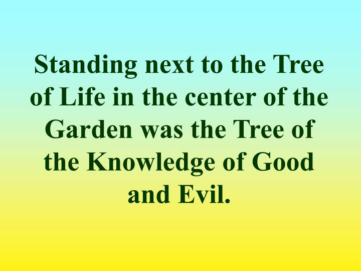 Standing next to the Tree of Life in the center of the Garden was the Tree of the Knowledge of Good and Evil.