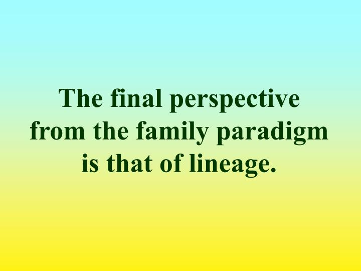 The final perspective from the family paradigm is that of lineage.