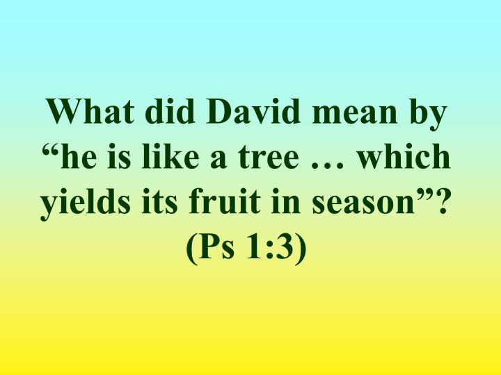 "What did David mean by ""he is like a tree … which yields its fruit in season""? (Ps 1:3)"