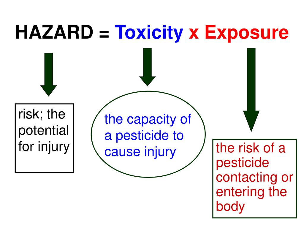 risk; the potential for injury