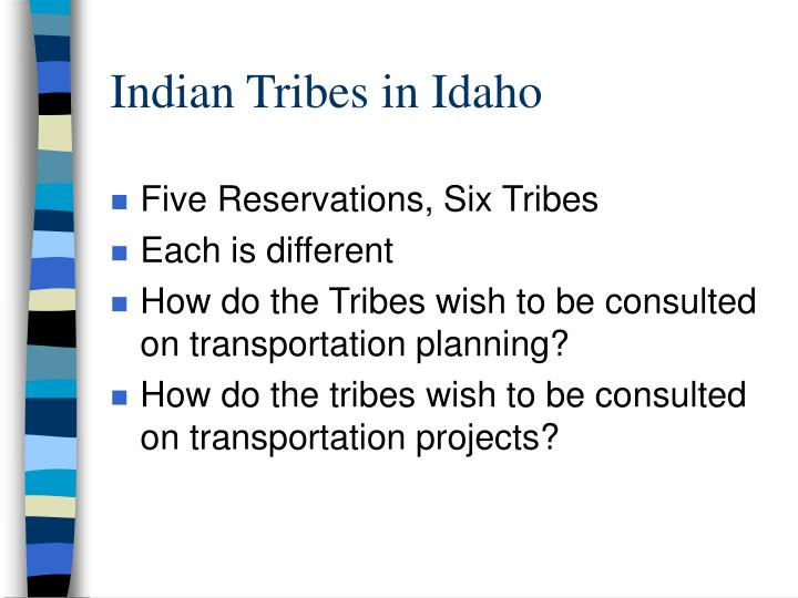 Indian tribes in idaho