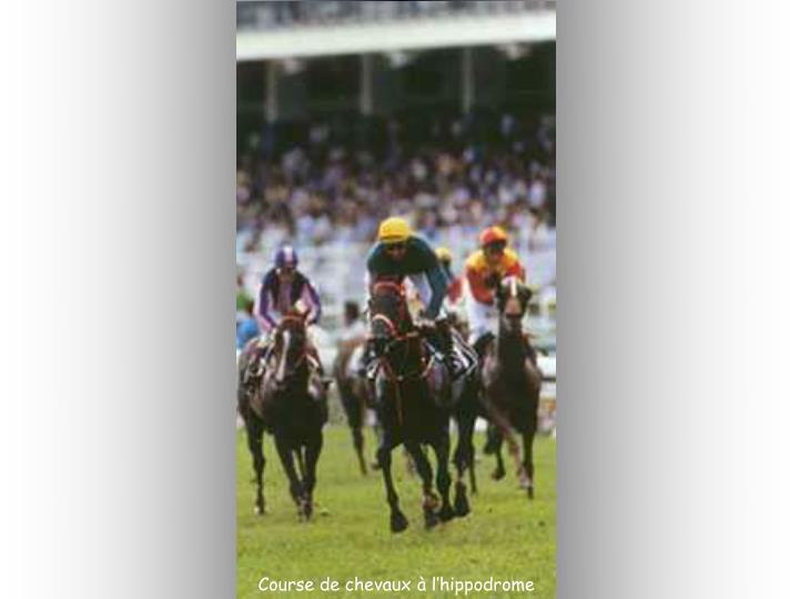 Course de chevaux à l'hippodrome