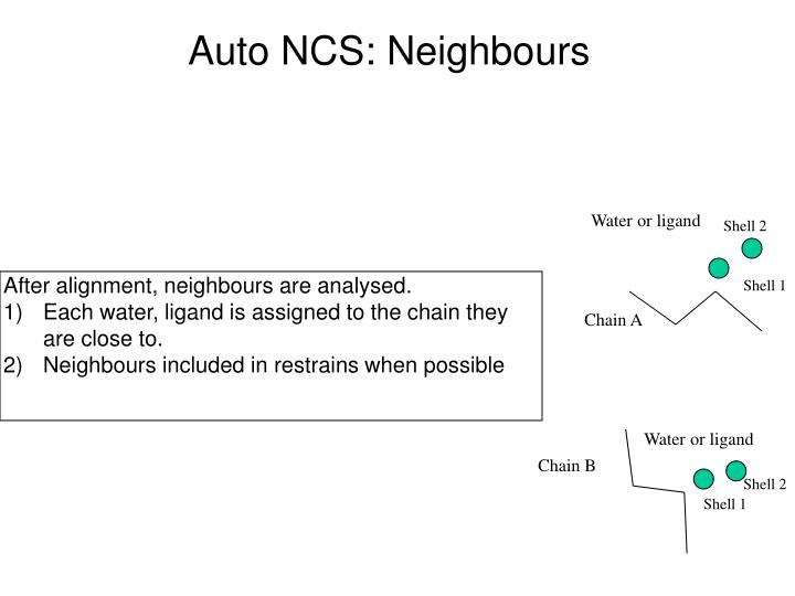 Auto NCS: Neighbours