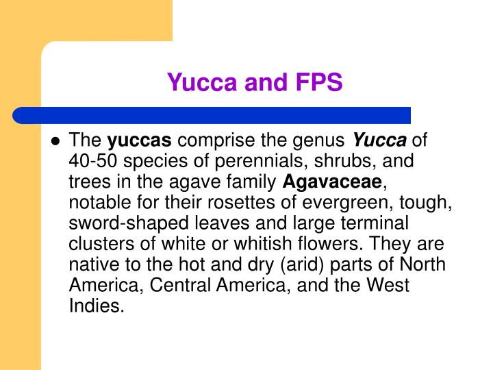 Yucca and FPS