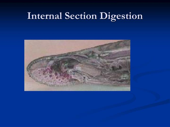 Internal Section Digestion