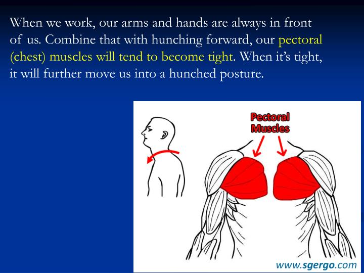 When we work, our arms and hands are always in front of us. Combine that with hunching forward, our