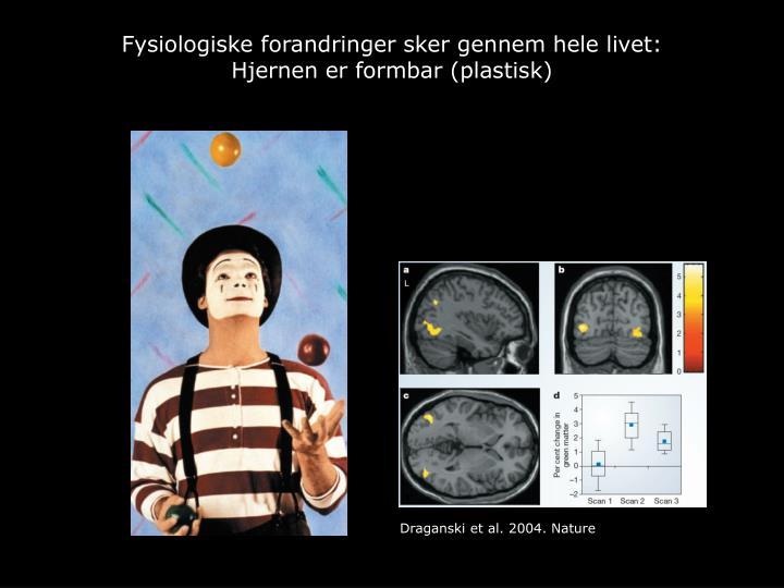 Fysiologiske forandringer sker gennem hele livet: