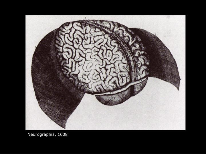Neurographia, 1608