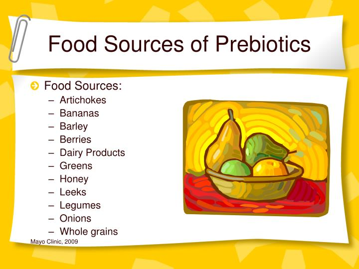 Food Sources of Prebiotics