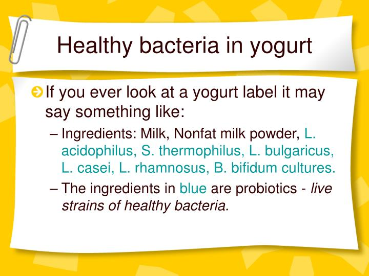 Healthy bacteria in yogurt