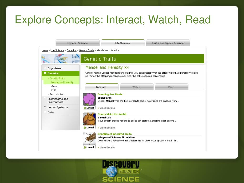 Explore Concepts: Interact, Watch, Read