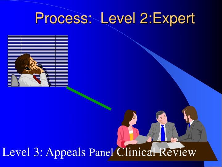 Process:  Level 2:Expert
