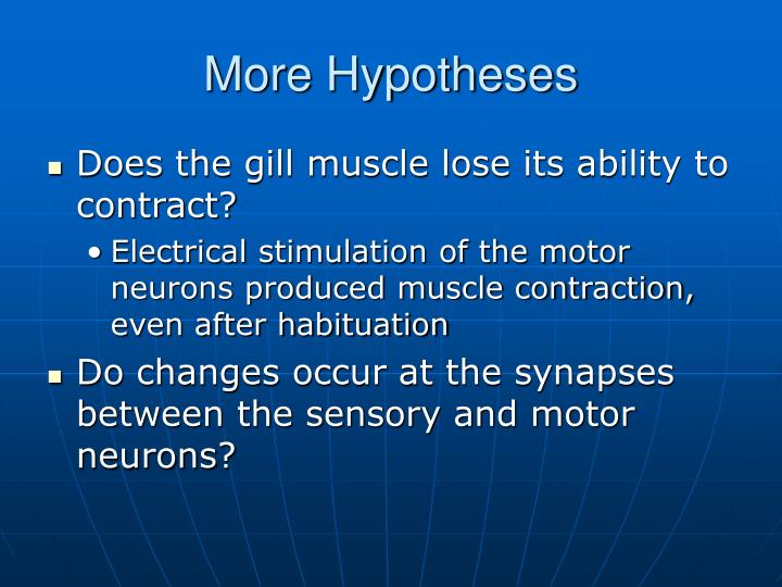 More Hypotheses