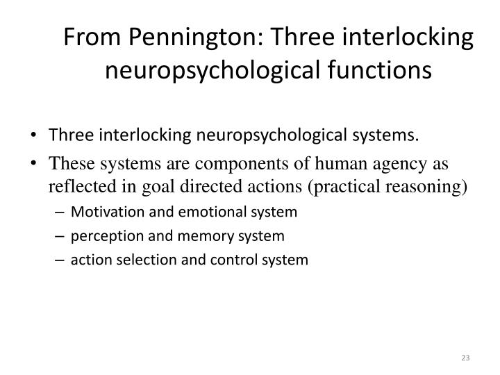 From Pennington: Three interlocking neuropsychological functions