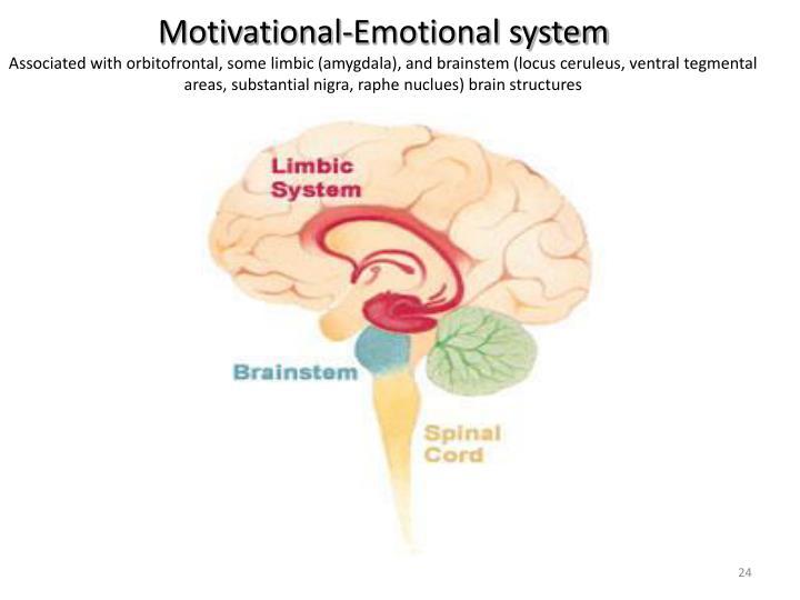 Motivational-Emotional system