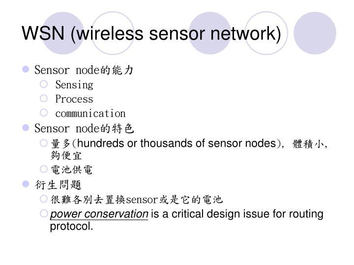 WSN (wireless sensor network)