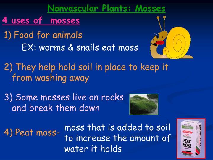 Nonvascular Plants: Mosses