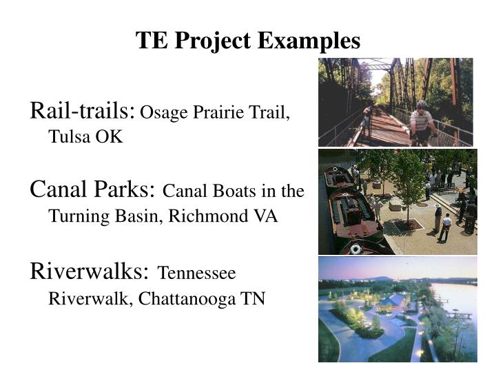 TE Project Examples
