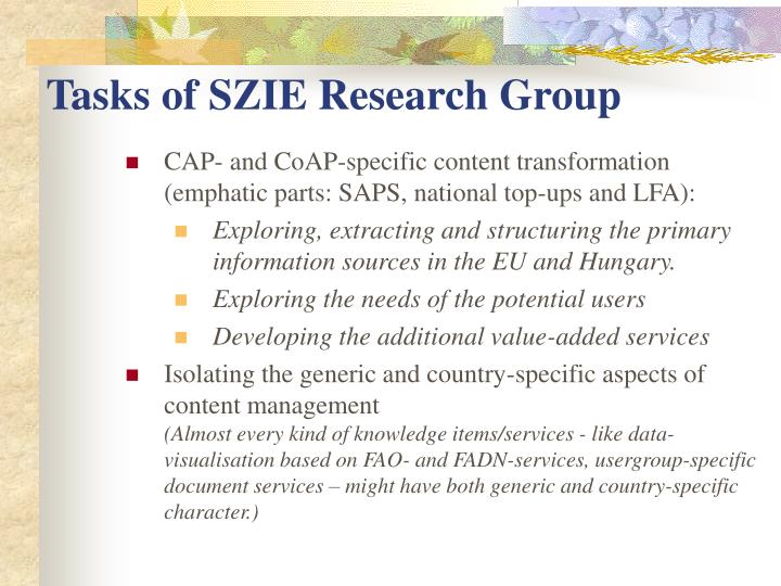 Tasks of SZIE Research Group