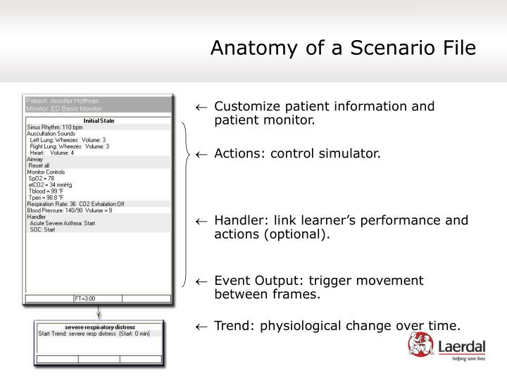 Anatomy of a Scenario File