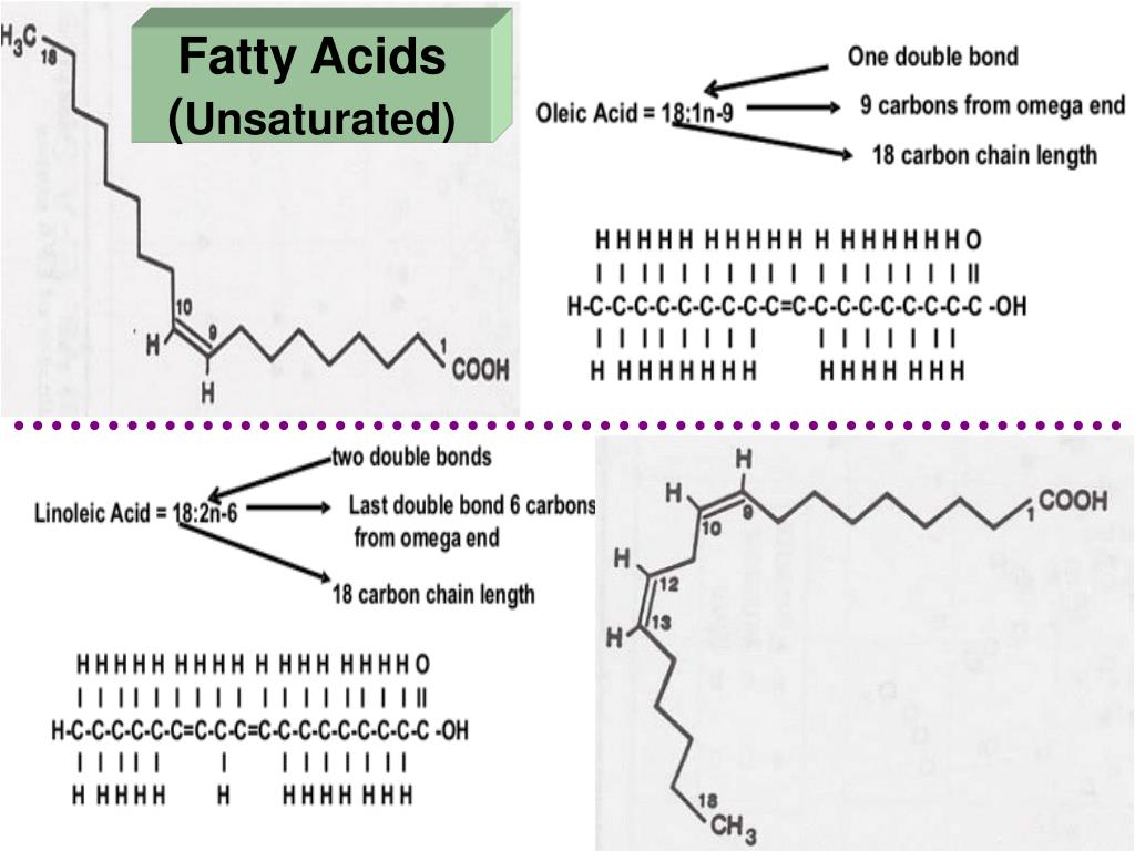 Fatty Acids (