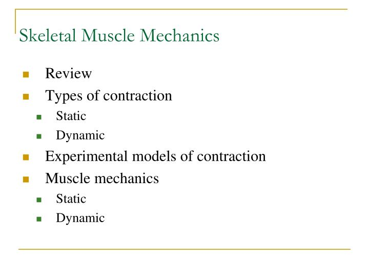 Skeletal muscle mechanics