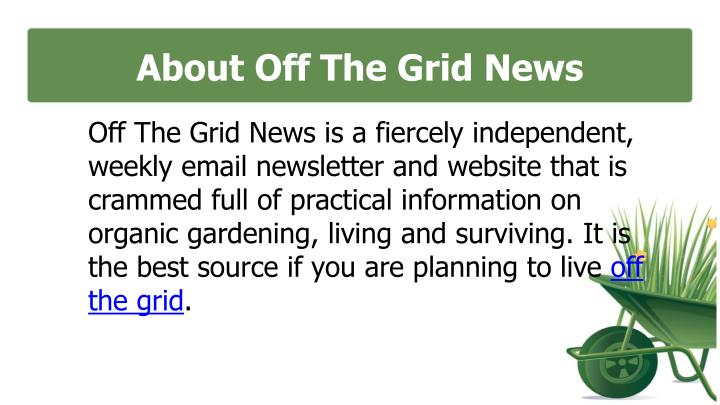 About off the grid news