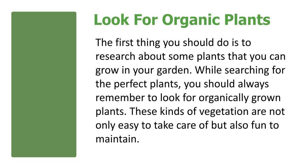 Look For Organic Plants
